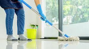 طريقة تنظيف الفلل بسهولة